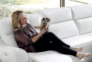 Limpieza del sofá con perros o gatos