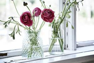Decorar con flores y plantas este verano